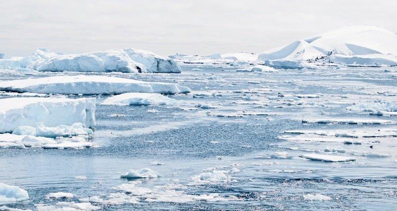 glaciers in the polar ice caps